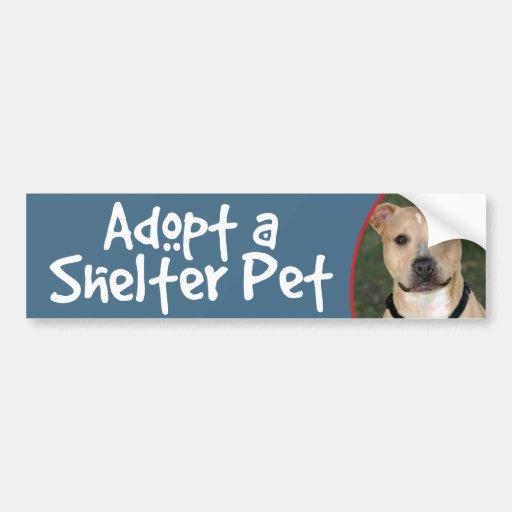 Adopte a un mascota del refugio - etiqueta de la pegatina para auto