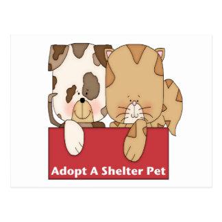 Adopte a un mascota del refugio tarjeta postal