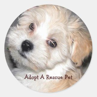 Adopte a un mascota del rescate pegatina redonda