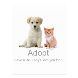 adopte a un mascota postal
