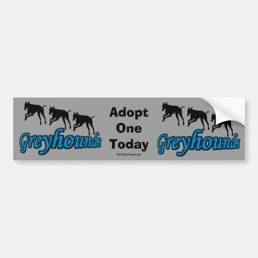 Adopte a una pegatina para el parachoques del galg etiqueta de parachoque