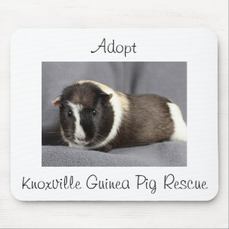 """""""Adopte"""" el cojín de ratón del conejillo de Indias Tapete De Ratones"""