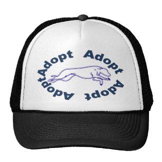 Adopte en azul gorra