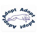 Adopte en azul postal