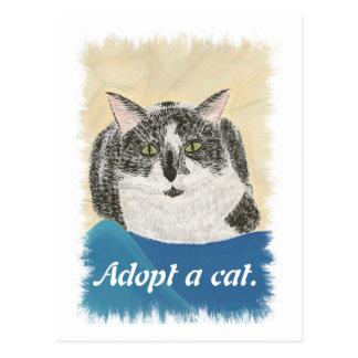 Adopte las postales del gato de una promoción de