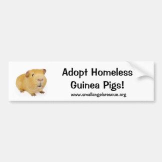 ¡Adopte los conejillos de Indias sin hogar! Pegatina Para Auto