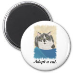 Adopte los imanes de una promoción del gato