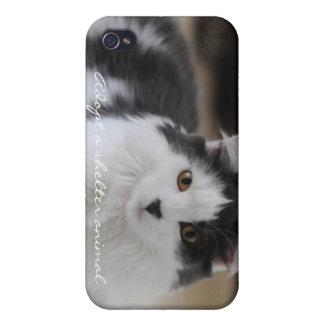 Adopte un animal del refugio iPhone 4 fundas