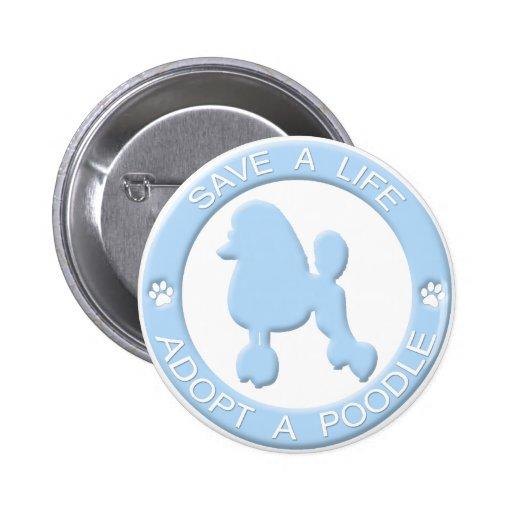 Adopte un botón del caniche