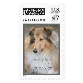 Adopte un collie, rescate del collie, collie timbre postal