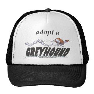 ¡Adopte un galgo! Gorra