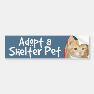 Adopte un gatito anaranjado del Tabby del mascota Pegatina De Parachoque