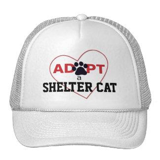 Adopte un gato del refugio gorra