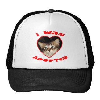 Adopte un gato gorras
