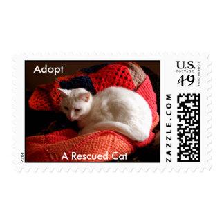 Adopte, un gato rescatado timbres postales