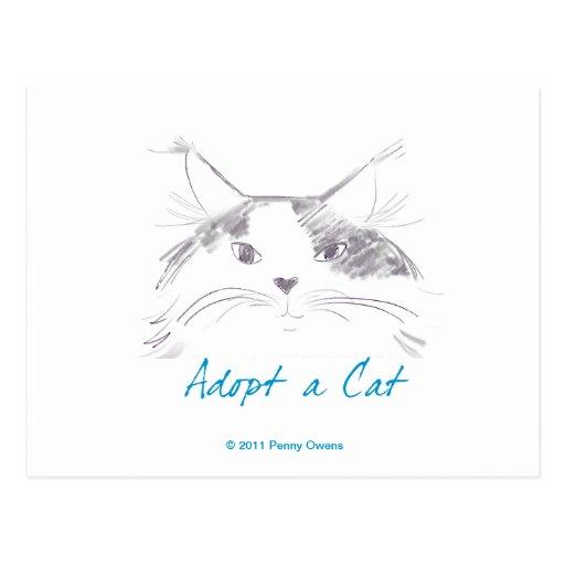 Adopte un gato tarjeta postal