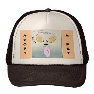 Adopte un gorra del mascota