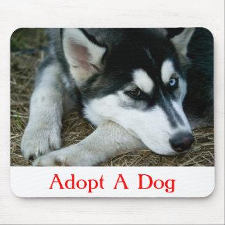 Adopte un husky siberiano Mousepad del perro