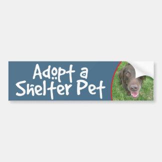 Adopte un laboratorio del chocolate del mascota de etiqueta de parachoque