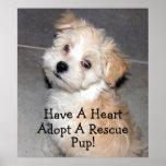 ¡Adopte un perrito del rescate! Impresiones