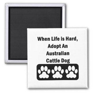 Adopte un perro australiano del ganado imán cuadrado