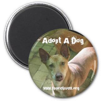 Adopte un perro imán redondo 5 cm