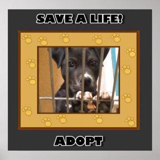 Adopte un poster del perrito