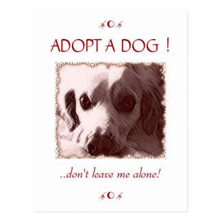 Adopte una postal del perro