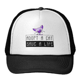 Adopte una reserva del gato un gorra de la vida
