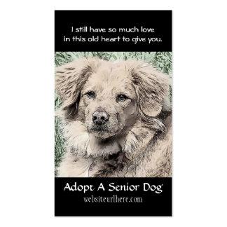 Adopte una tarjeta de visita animal del rescate de
