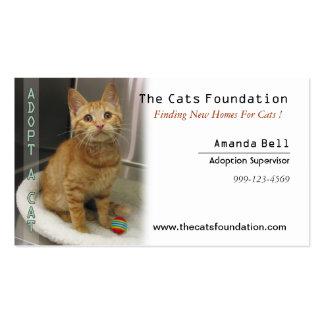 Adopte una tarjeta de visita del gato