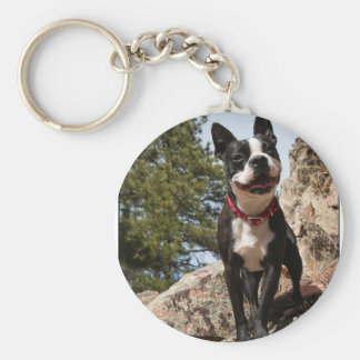 Adopted. Boston Terrier Keychain