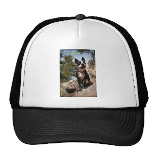 Adopted. Boston Terrier Trucker Hat