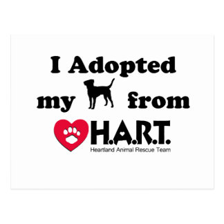Adopted my Dog Postcard