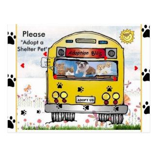 Adoption Bus for Cat's & Dog's Postcard