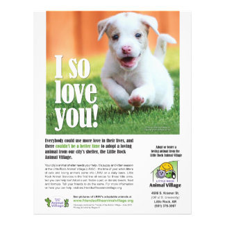 Adoption Poster - Little Rock Animal Village Flyer