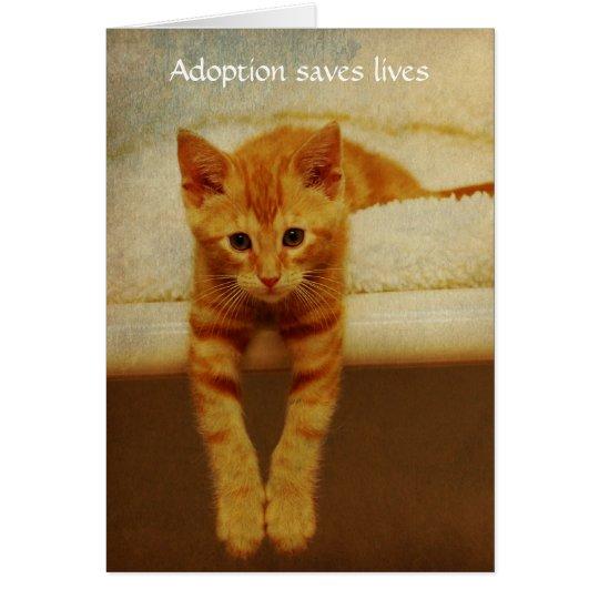Adoption Save Lives Orange Kitten Notecard