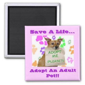 ¡Adoptme, ahorra una vida…, adopta a un mascota ad Imán Cuadrado