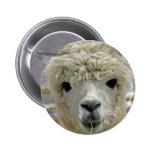 Adorable Alpaca Button