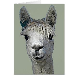 Adorable Alpaca Card