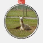 Adorable Alpaca Christmas Ornament