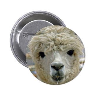 Adorable Alpaca Pinback Button