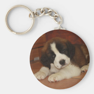 Adorable and Sweet St. Bernard Puppy Keychain
