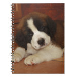 Adorable and Sweet St. Bernard Puppy Spiral Note Books