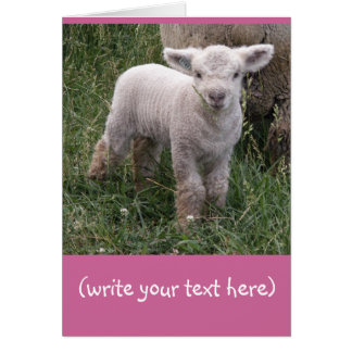 Adorable Baby Greeting Card