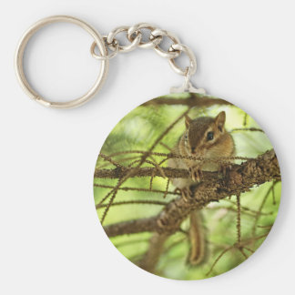 Adorable Baby Chipmunk Hiding in a Pine Tree Basic Round Button Keychain