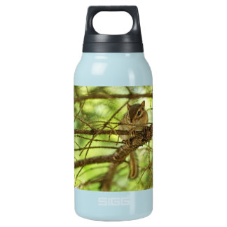 Adorable Baby Chipmunk Hiding in a Pine Tree Insulated Water Bottle