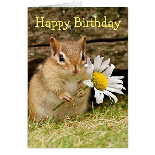 Adorable Baby Chipmunk With Daisy Happy Birthday Card