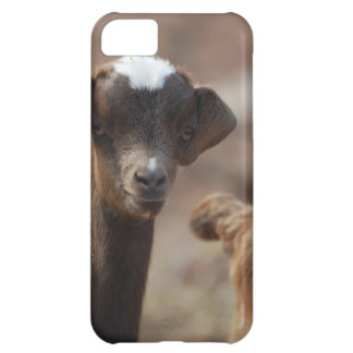 Adorable Baby Goat iPhone 5C Covers