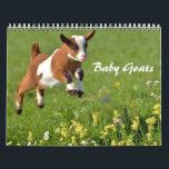 "Adorable Baby Goats Calendar<br><div class=""desc"">Who can resist  baby goats? This Adorable Baby Goat Calendar is a year full of baby goat photos</div>"
